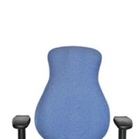 Soma Ergonomics Mid-back Chairs